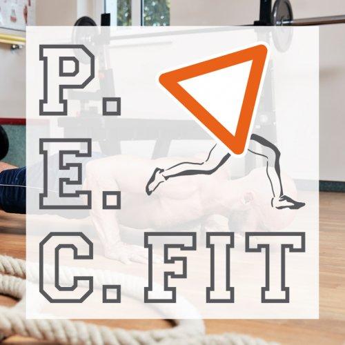 RME Digital Productions - Projekt Pecfit